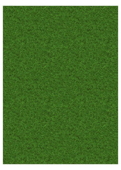 Grass-Field-Scene.jpg