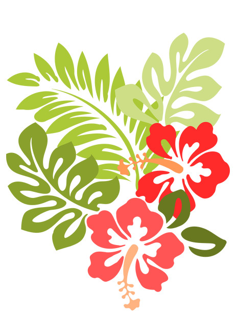 Hawaii-Hibiscus.jpg