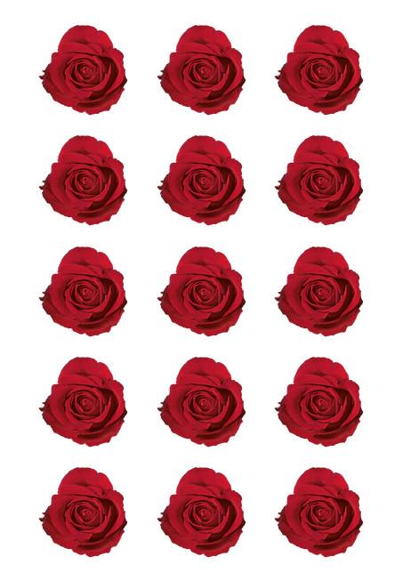 Red-Roses.jpg
